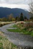 Um rio funciona completamente Foto de Stock Royalty Free