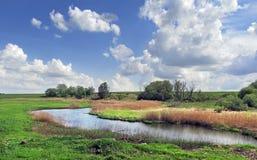 Um rio pequeno Imagens de Stock
