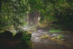 Um rio pequeno com cenário nevoento imagem de stock royalty free