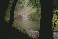 Um rio pequeno com cenário nevoento foto de stock royalty free