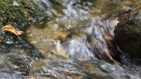 Um rio pequeno na montanha perto da mola vídeos de arquivo