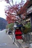 Um riquixá estaciona sob a árvore de bordo vermelho em Arashiyama, Kyot Fotos de Stock