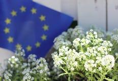 Um símbolo da União Europeia Fotografia de Stock Royalty Free
