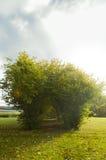 Um salão das folhas verdes Foto de Stock Royalty Free