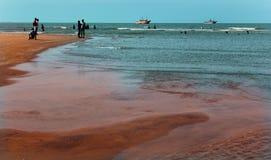 Um seascape da praia do velankanni do santuário com povos da excursão fotografia de stock