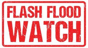 Um sinal de aviso da estrada contra um céu tormentoso com área de inundação repentina das palavras, aviso da inundação ilustração royalty free