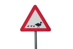 Um sinal de tráfego com patos imagem de stock