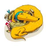 Um sono longo do cão em uma cesta Imagens de Stock