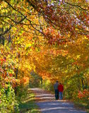 Um Stroll do outono Foto de Stock