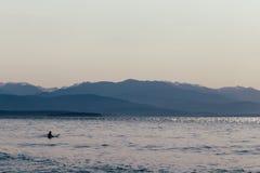 Um surfista com sua prancha na ?gua fotos de stock royalty free