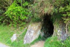 Um túnel abandonado velho da mina, sendo recuperado por natureza imagem de stock