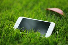 Um telefone celular esperto branco do telefone no gramado da grama verde no jardim do parque da mola do verão no dia ensolarado fotografia de stock