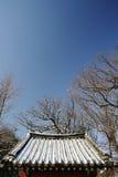 Um telhado telhado Imagens de Stock