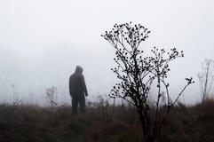 Um temperamental fora da figura encapuçado posição do foco no fundo em um dia de invernos nevoento Com abafado edite fotos de stock