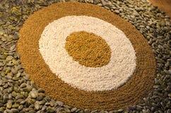 Um teste padrão circular do bulls-eye das sementes Imagens de Stock