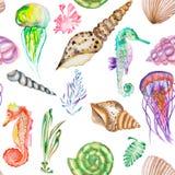 Um teste padrão com os cavalos marinhos da aquarela, as medusa, os shell e a alga (algas) ilustração royalty free