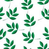 Um teste padrão de ramos verdes Imagens de Stock Royalty Free