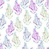 Um teste padrão floral com o verde, o marrom, as plantas roxas e azuis brilhantes da aquarela, algas ilustração do vetor