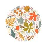 Um teste padrão redondo das folhas, das bagas e dos ramos de outono Fotos de Stock