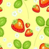 Um teste padr?o extravagante Morangos bonitas maduras Apropriado como o papel de parede na cozinha, como um fundo para o alimento ilustração do vetor