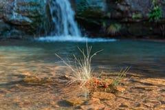 Um topete da grama e uma água de conexão em cascata em três condados dirigem fotos de stock