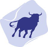 Um touro Fotos de Stock