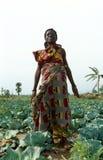 Um trabalhador de exploração agrícola, Uganda imagens de stock royalty free