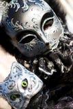 Um traje do gato em Veneza Fotos de Stock