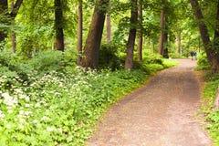 Um trajeto arenoso em um grande parque Fotografia de Stock