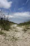 Um trajeto através da duna fotografia de stock royalty free