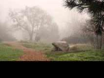 Um trajeto através de um parque em um dia nevoento fotografia de stock royalty free