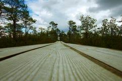 Um trajeto de madeira ao longo do pântano imagem de stock