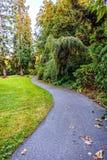 Um trajeto do enrolamento em um parque com árvores, arbustos, grama verde Imagem de Stock