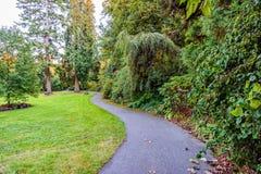 Um trajeto do enrolamento em um parque com árvores, arbustos, grama verde Fotografia de Stock Royalty Free
