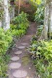 Um trajeto do jardim fotos de stock royalty free