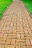 Um trajeto do tijolo do enrolamento entre a grama verde com ajardinar verde no fundo Foto de Stock