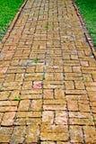 Um trajeto do tijolo do enrolamento entre a grama verde com ajardinar verde no fundo Imagens de Stock Royalty Free