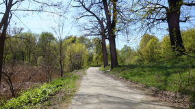 Um trajeto em um canto abandonado de um parque velho na primavera Imagens de Stock Royalty Free