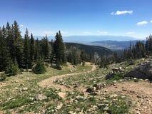 Um trajeto em Montana Mountains Fotos de Stock Royalty Free