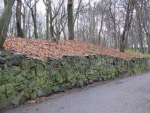 Um trajeto em um parque colorido do outono fotografia de stock