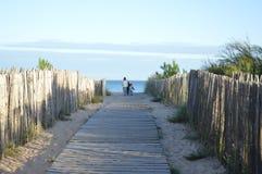 Um trajeto para uma praia fotografia de stock royalty free