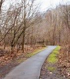 Um trajeto pavimentado que conduz a uma ponte de madeira no parque de Frick fotos de stock royalty free
