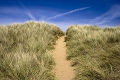 Um trajeto que conduz sobre uma duna de areia Fotografia de Stock