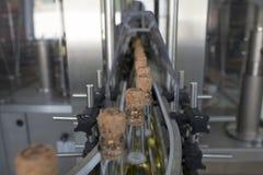 Um transporte para a produção de vinho espumante fotos de stock royalty free