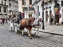 Um transporte puxado por cavalos que passa dentro do palácio de Hofburg imagens de stock royalty free