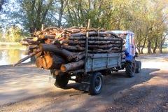 Um trator pequeno com um reboque leva logs de madeira imagem de stock