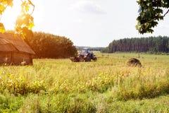 Um trator velho ara um campo em uma vila no fundo uma floresta, uma cabana arruinada velha, um dia de verão, arando um campo imagem de stock