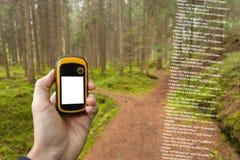 Um trekker está encontrando a posição direita na floresta através dos gps em um dia outonal nebuloso Foto de Stock