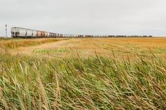 Um trem da grão nas planícies Fotografia de Stock