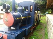 Um trem na exploração agrícola Imagem de Stock Royalty Free